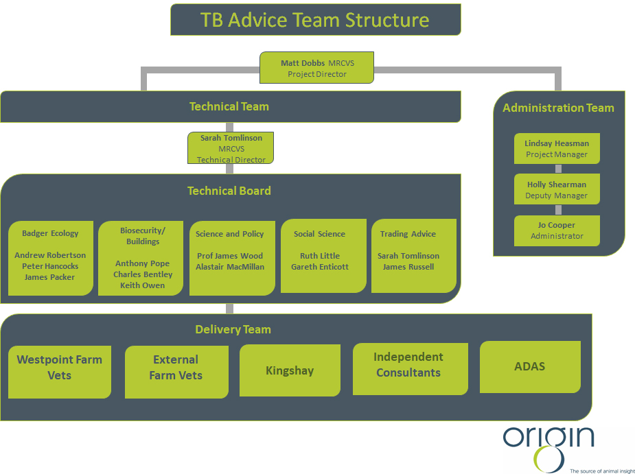 TB Advice Team Structure